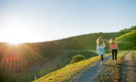 Best Hikes of the East Bay