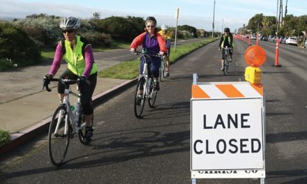 The Ruckus Over Alameda's Shore Line Cycle Track