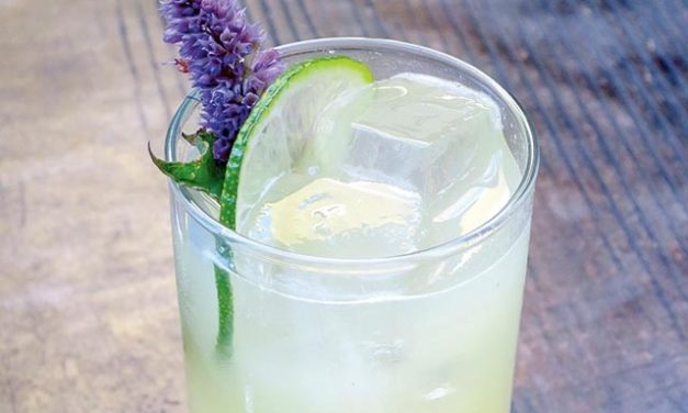 Mixologists Are the New Herbalists