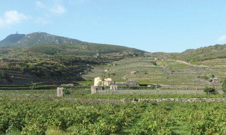 Italy's Pantelleria Feels Like Africa